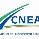 logo - CNEAP